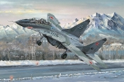 MiG29UB Fulcrum Russian Fighter