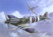 Seafire Mk.III 'D-Day Fleet Eyes'