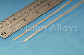 Phosphor Bronze Strip PB1M